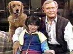 Punky Brewster - image 4
