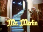Mr. Merlin - image 1