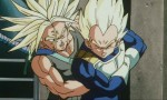 Dragon Ball Z - Film 09 - image 11