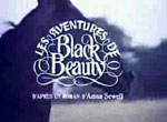 Les Aventures de Black Beauty - image 1